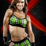 3135WWE13-AJ-Art